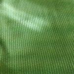 Costa verda